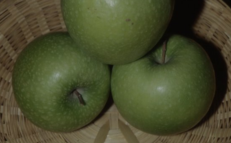 <p>Melo granny smith</p>